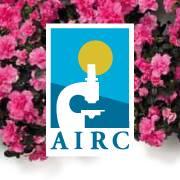 Azalee per la ricerca AIRC